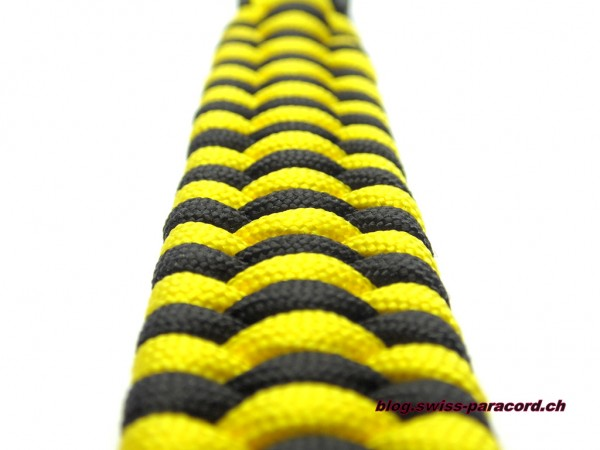 Trilobite Armband