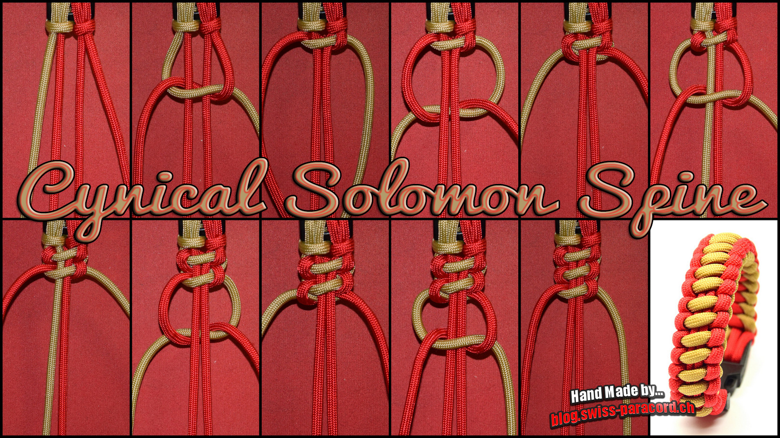 Cynical Solomon Spine Tutorial