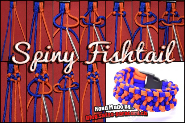 Spiny Fishtail Tutorial
