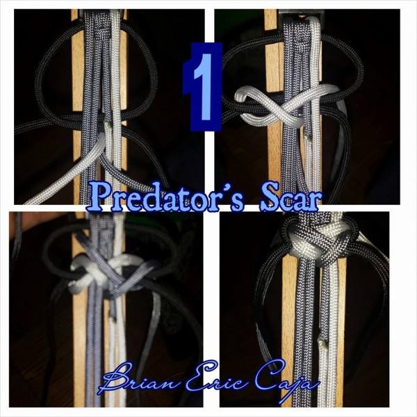 Predator's Scar