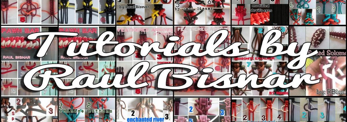 Tutorials by Raul Bisnar