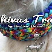 Shivas Trail