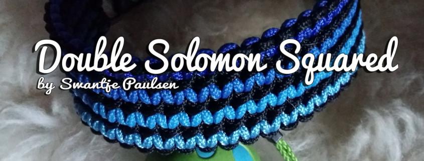 Double Solomon Squared