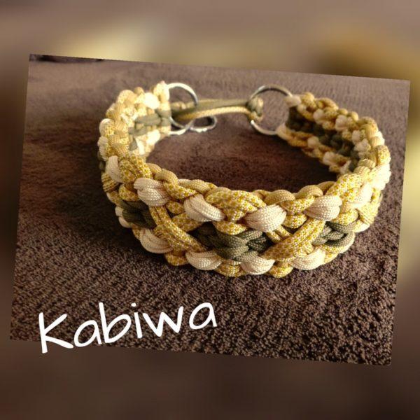 Kabiwa