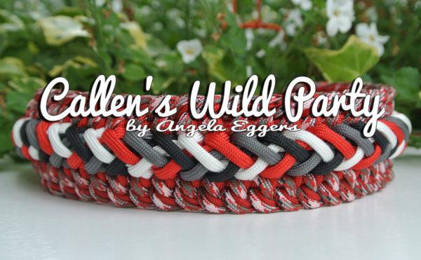 Callen's Wild Party