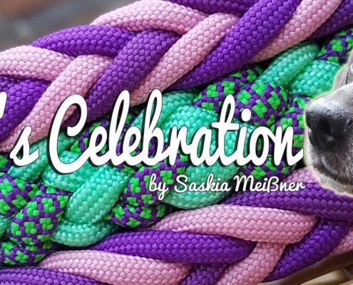 Luna's Celebration