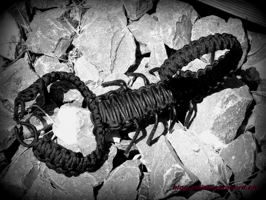 Paracord Skorpion