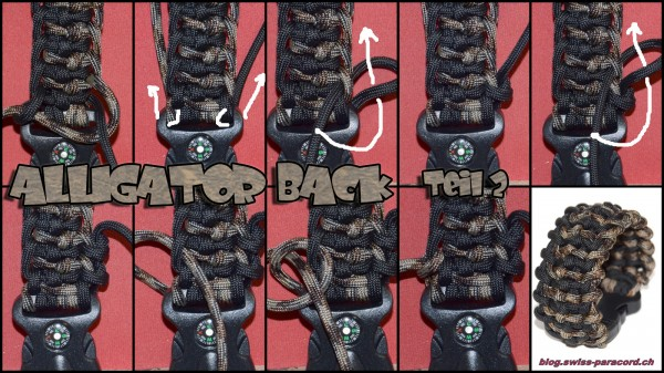 Alligator Back Tutorial Teil 2