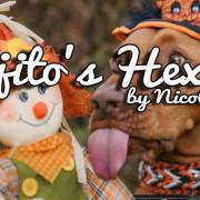 Mojito's Hexerei