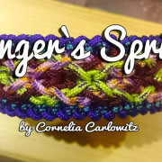 Danger`s Spring