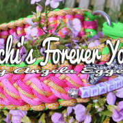 Apachi's Forever Young