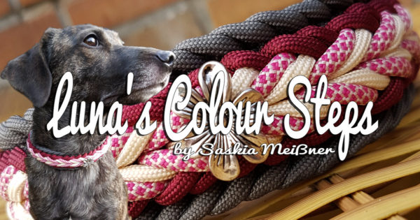 Luna's Colour Steps