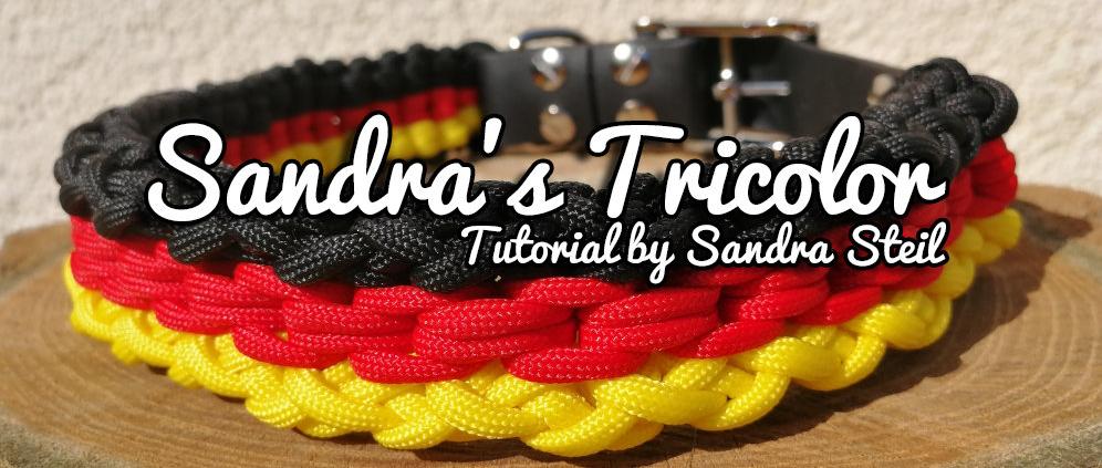 Sandra's Tricolor