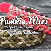 Pumkin Mini